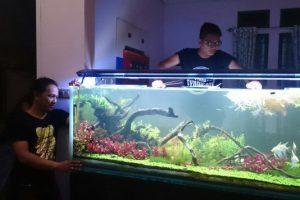 Ruang Tamu Rumah Bpk Edi Supomo - Aquairscape
