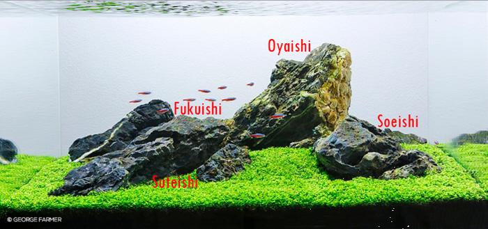 Aquair ID - Mengenal Aquascape Gaya Iwagumi